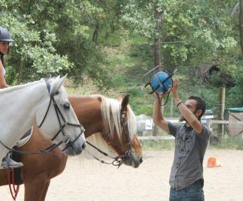 Séance de Horse Ball